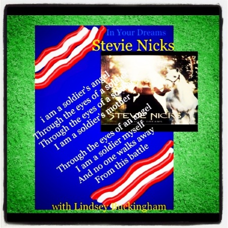 Stevie Nicks - A Soldier's Angel